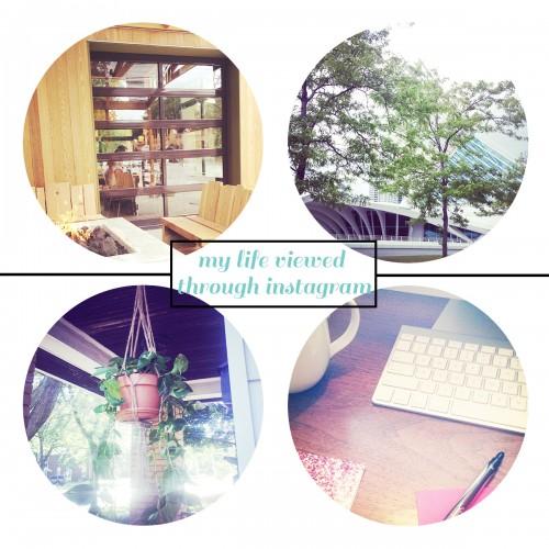 instagrams 9